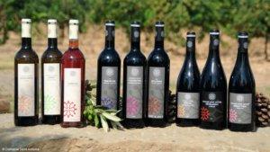 Französische Weine, Domaine Saint Antoine