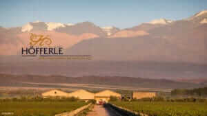 Südamerikanische Weine, Höfferle